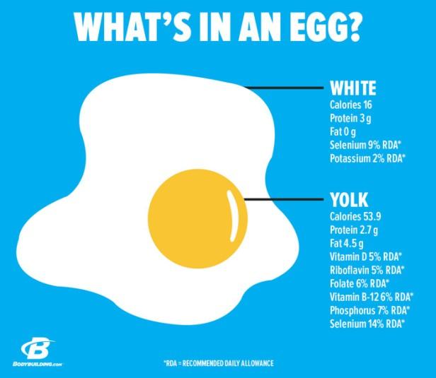 dont-throw-away-that-egg-yolk-v2-3-700xh